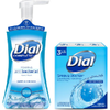 Save $1.00 on 2 Dial® Soap when you buy TWO (2) Dial Complete® Foaming Hand W...